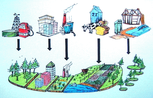 biokapazität Flächenkategorien